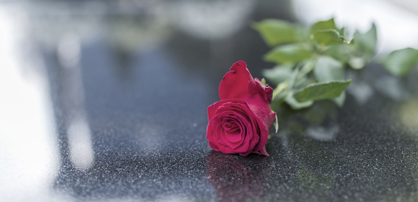 A red rose on marble
